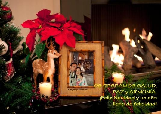Felicitación_de_Navidad_2013_web